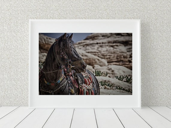 Horse Photo Print, Middle Eastern Photography, Horse Decor
