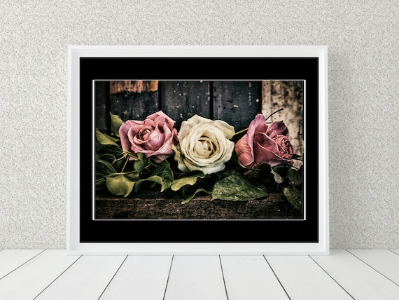 Rose Flower Photo Print, Floral Photography, Botanical Decor