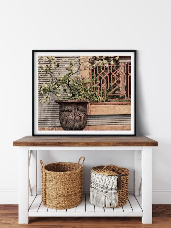Bougainvillea Pot Plant Photo Print, Indonesia, Borneo, Plant Wall Art