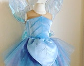 Periwinkle costume and wi...