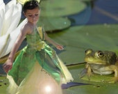Princess and the Frog cos...