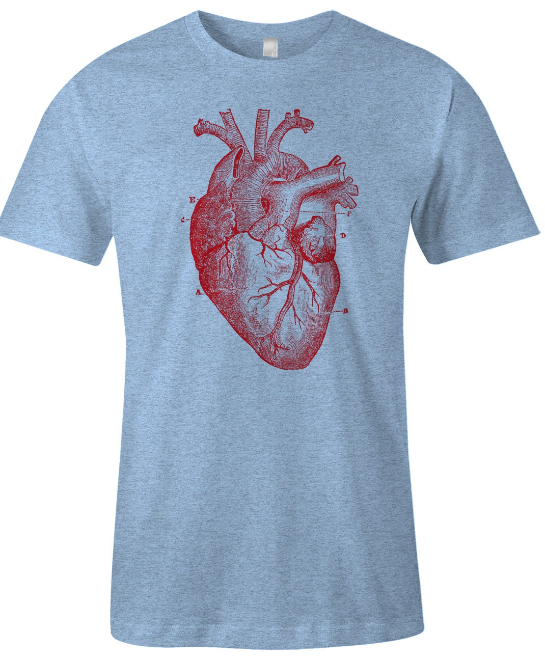 Human Heart T Shirt Anatomy Diagram Item Etsy Click For Details Show Me A Of The 1457