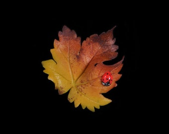 Yellow Sycamore Leaf and Ladybird Pin Brooch