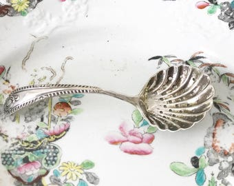 A pretty silver plated sugar sifter spoon