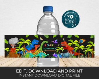 Editable Dinosaur Bottle Label, Dinosaur Party Printable and Editable Personalized DNOP