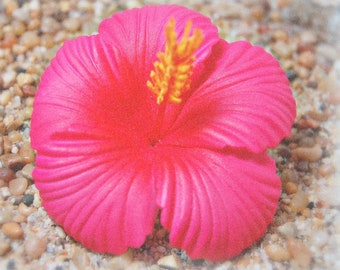"New 3"" Moana Hot Pink Magenta Hibiscus Hair Clip, Hawaiian hair flower, Tropical flower, Boho, Beach Wedding, Luau, w/Mini Plumeria hairclip"