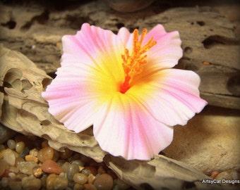 Hibiscus Hair Clip, Pink & white Hawaiian Hibiscus hair flower, Hula Dancer, Beach Wedding Luau party, with FREE Mini Plumeria hairclip GIFT