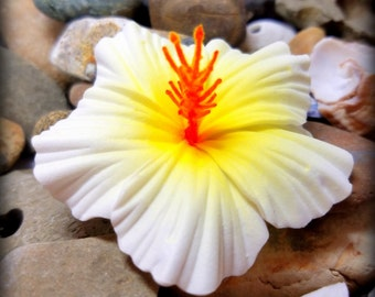 Hibiscus Hair Clip, White & Yellow Hibiscus, Hibiscus hair flower, Foam, Hawaiian Polynesian Wedding Luau With FREE mini PLUMERIA hairclip