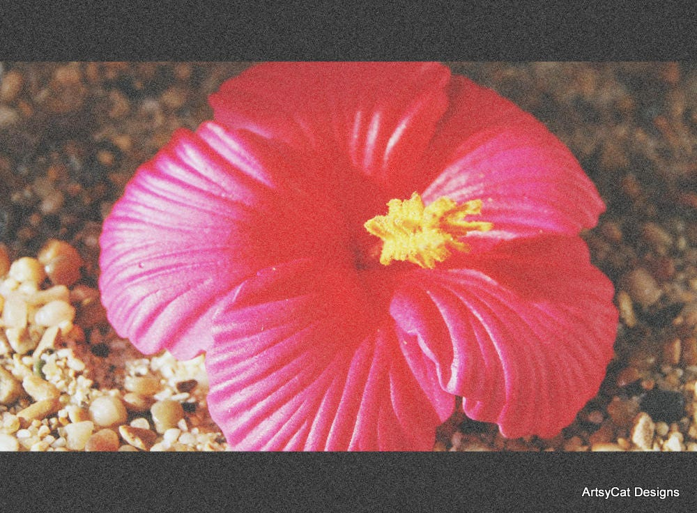 New 3 Moana Hot Pink Magenta Hibiscus Hair Clip Hawaiian Hair