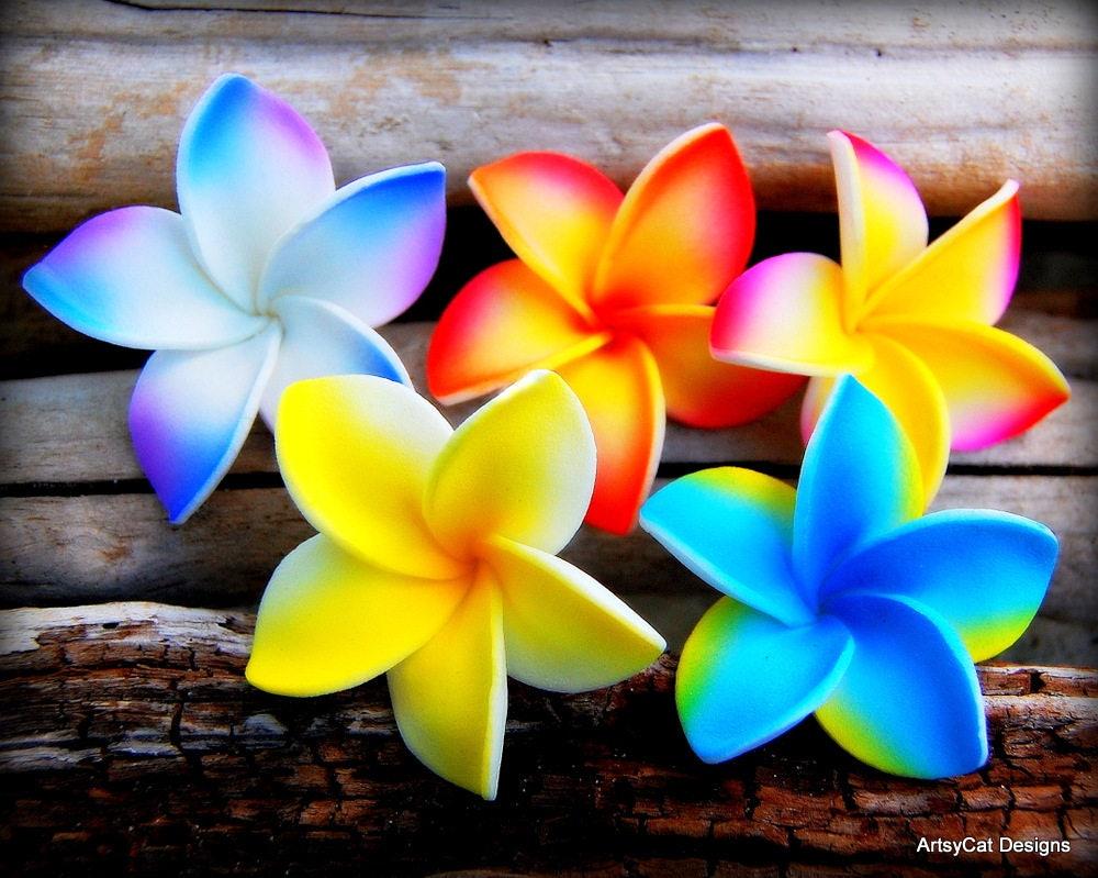 New Plumeria Star Flower Hair Clip Set Set Of 5 Moana Party