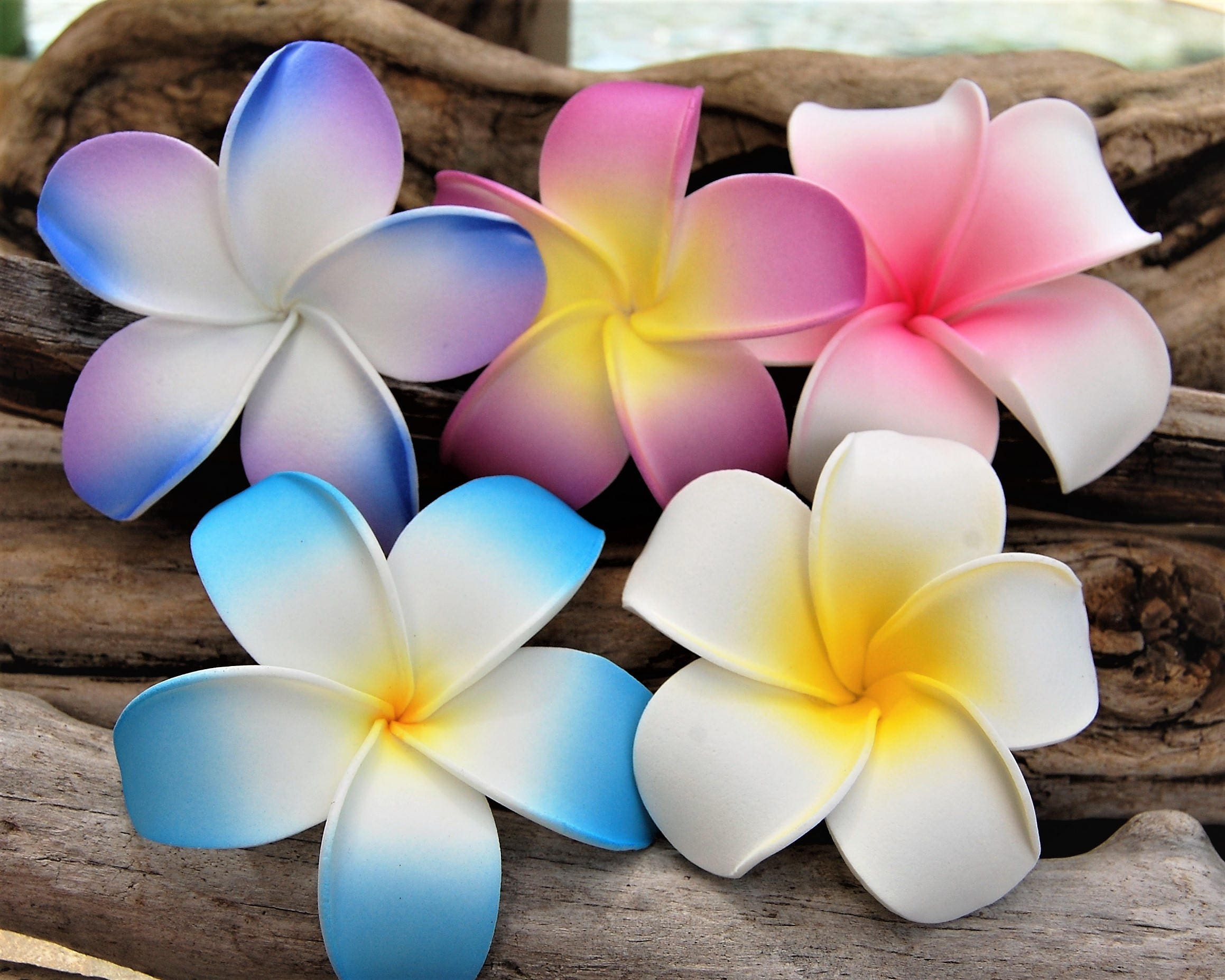 Hawaiian Plumeria Flower Hair Clip Set Moana Hair Flower 3 Large