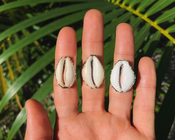 large cowrie shell ring, made to order
