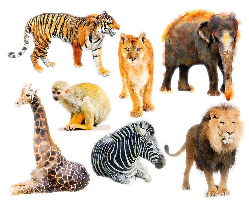 Watercolor Safari Jungle Zoo Wild Animals Digital Clip Art Etsy