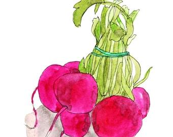 "Digital print of a drawing ""radishes"", 10 x 15 cm"