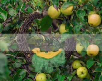 Newborn Digital Backdrop Background Composite / an apple tree