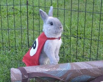 4b649aff2cb1b Superhero cape for small animals, bunny cape, pet cape, guinea pig cape, bunny  clothes, pet outfit, pet halloween costume, pet costume