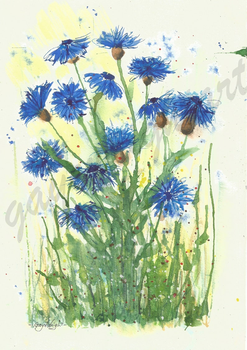CORNFLOWERS - A4- Digital Download Print by Gaye Wright Art    DIY Home  Decor, Card Making, Prints to Frame, Gifts