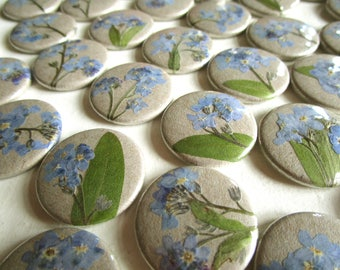 Forget-me-not, 0.98'' pinback button with dried flower or magnet