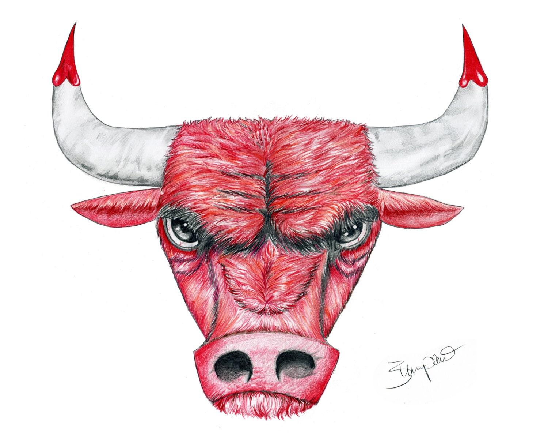 Chicago Bull Logo lápiz dibujo 11 x 14