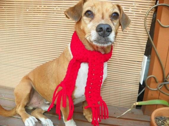 XX-Small Red Dog Bandana