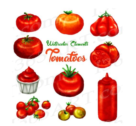 Bush Clipart Vegetable Plant - Cartoon Tomato Clipart Png, Transparent Png  - kindpng
