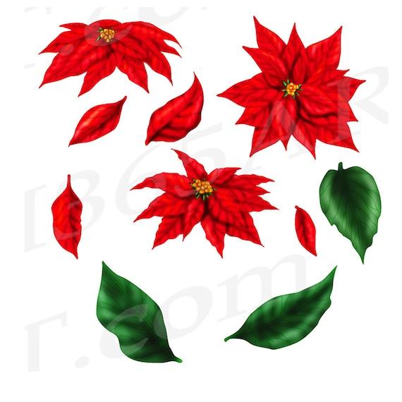 Christmas Flowers Clipart Christmas Poinsettia   Etsy