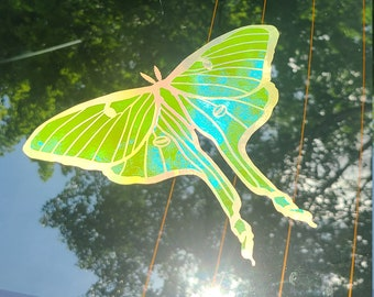 Color Shifting Vinyl Decal Luna Moth Sticker // Car Decal // Window Decal // Multiple Surface Decal