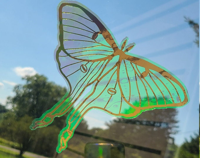 Translucent Lunar Moth Holographic Window Film Decal // Easy to Apply and Remove // Will Restick