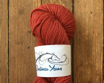 Paulie Worsted in Saucy- Shalimar Yarns