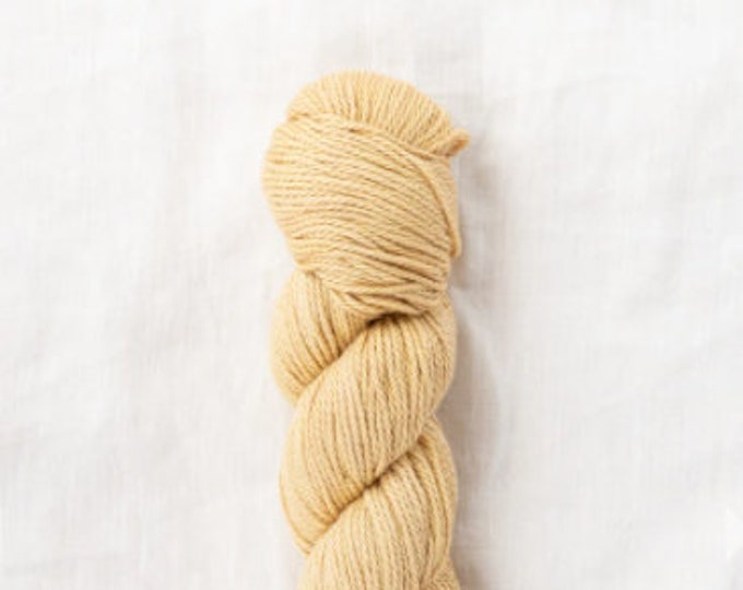 Willet Naturally Dyed in Buckthorn Light by Quince & Co
