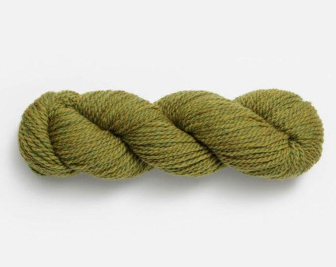 Woolstok in Earth Ivy 1309 by Blue Sky Fibers