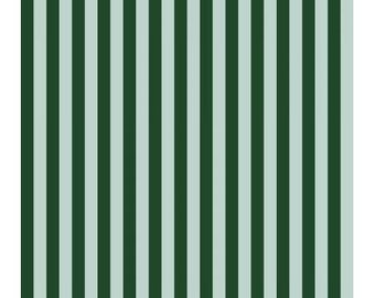 Cabana Stripe in Mint Fabric from Primavera by Rifle Paper Company