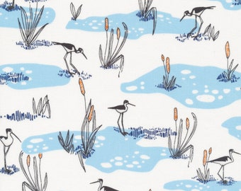 Wetlands in Blue from Terrestrial by Sarah Watson for Cloud9