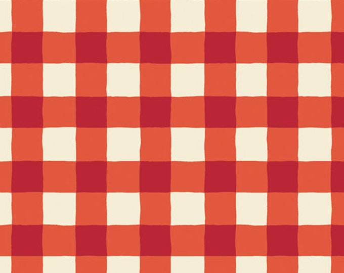 Plaid of my Dreams in Joyful from the Cozy and Joyful  Collection designed by AGF Studio