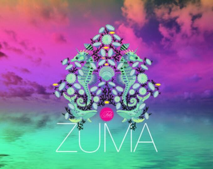 Fat Quarter Bundle - Zuma by Tula Pink for Free Spirit