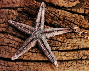 Electroformed starfish copper Pendant natural sea starfish amulet taliman Oxidized to old coppper retro czarm necklace by GepArtJewellery