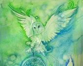 Barn Owl Dream Catcher Sp...