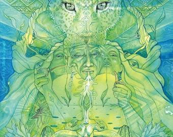 Shamanic Plant Medicine Art Print / A4