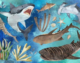 Ironing Picture Sharks Sea Set
