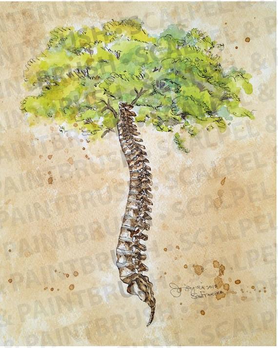 16x20 Arbor Vitae Tree Of Life Spine Tree Etsy