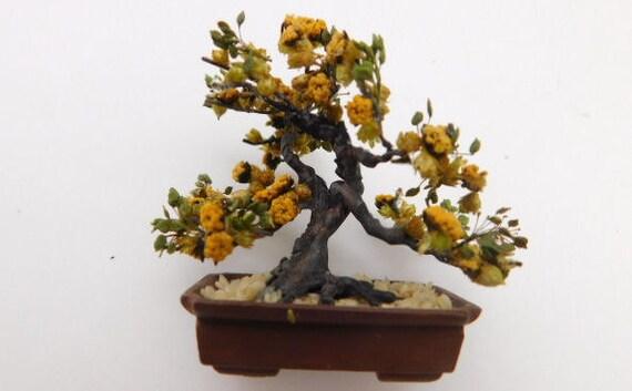 Craft Kit Yellow Sage Bonsai Etsy