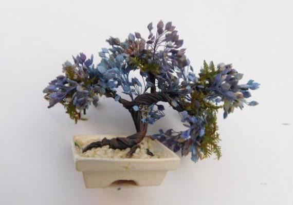 kit jacaranda bonsai etsy. Black Bedroom Furniture Sets. Home Design Ideas