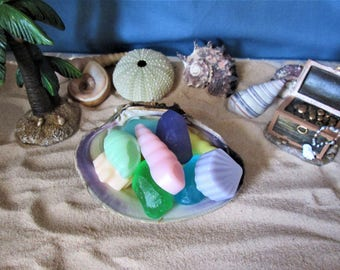10 Shells and Sea Glass Organic Shea Butter and Glycerin Soap Favor in a Clam Shell Wedding, Bridal Shower, Birthday
