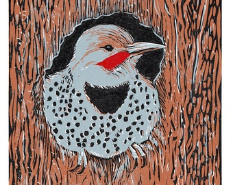 Northern Flicker, 4 Color Linocut Reduction Print, Bird, Hand Pulled Fine Art, Limited Edition, Printmaking Original