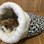 Pet Bed, Paw, Snuggle Den, Sleeping Bag, Den, burrow bed. dog sleeping bag, snuggle sacks, cave beds
