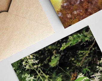 6 Pack Card & Envelope Set ~ Vermont Wildlife