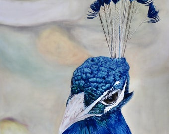 Oil Painting, Prints & Cards ~ Peafowl Bust