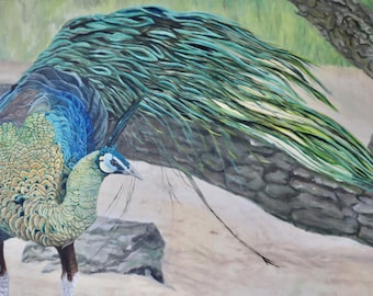 Oil Painting, Prints & Cards ~ Peafowl in Motion