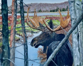 Prints & Cards~ Moose at Eventide