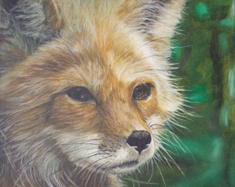 Prints & Cards ~ Fox Tranquility in Time